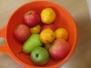 Košík plný ovoce